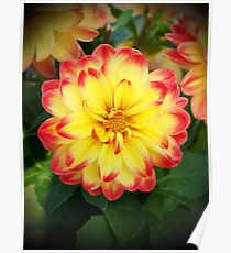 Earth laughs in flowers. Poster