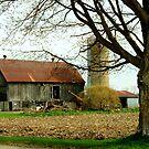 A Barn in Spring.............. by Larry Llewellyn