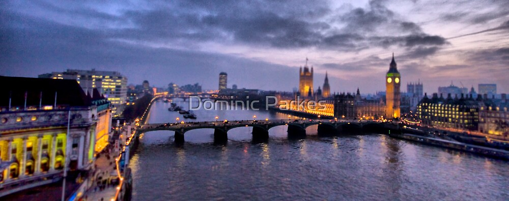 London view by Dominic Parkes
