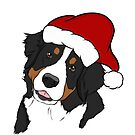 Bernese Mt. Dog - Merry Christmas  by rmcbuckeye