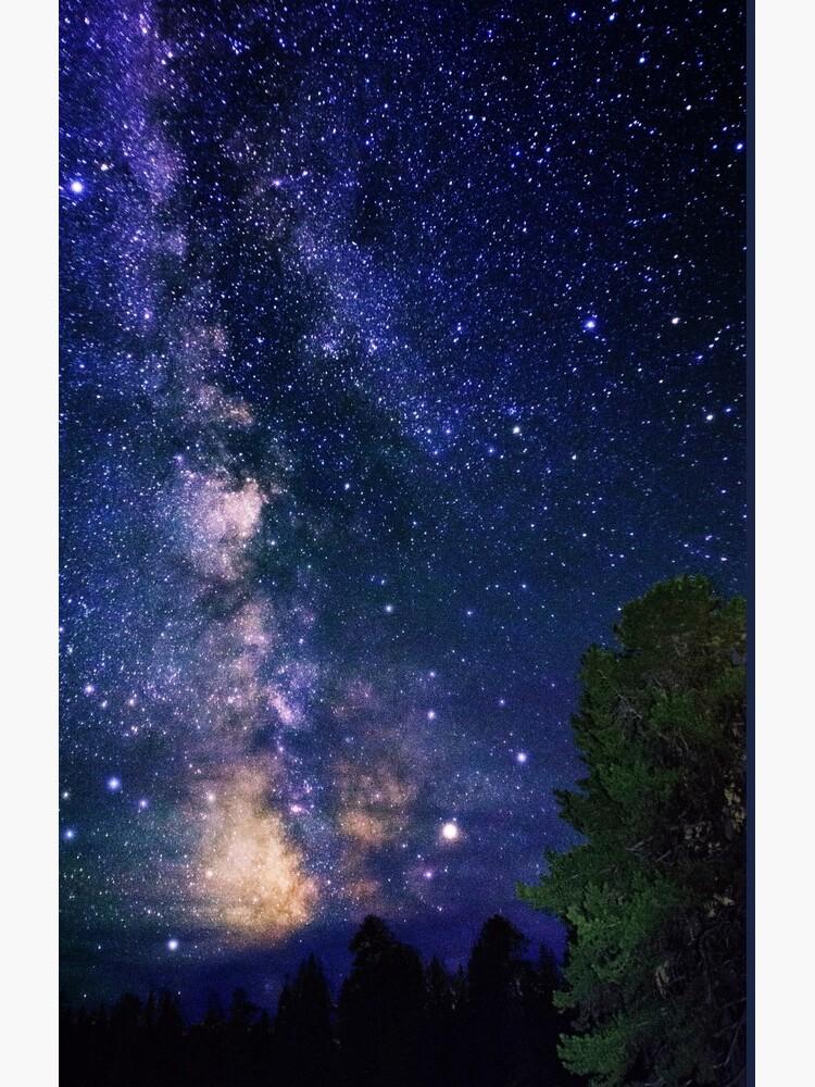 Milky Way by LivingSeaimages