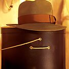 Fedora And A Hat Box by SuddenJim