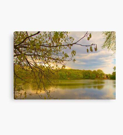 Brady Lake Look Canvas Print