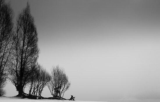 Deep Winter by Platslee