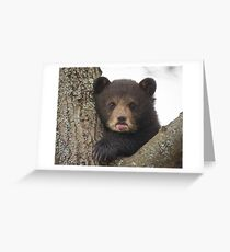 Bear Cub Greeting Card