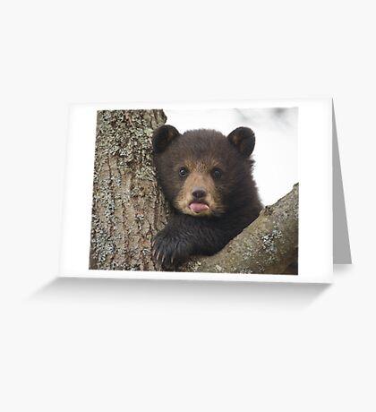 Bear Cub Greeting Card