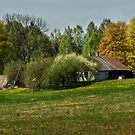 Spring in old farmstead 3 (White & brown house) by Antanas