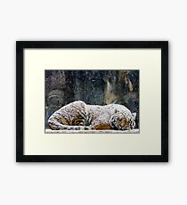 Warm Coat Framed Print