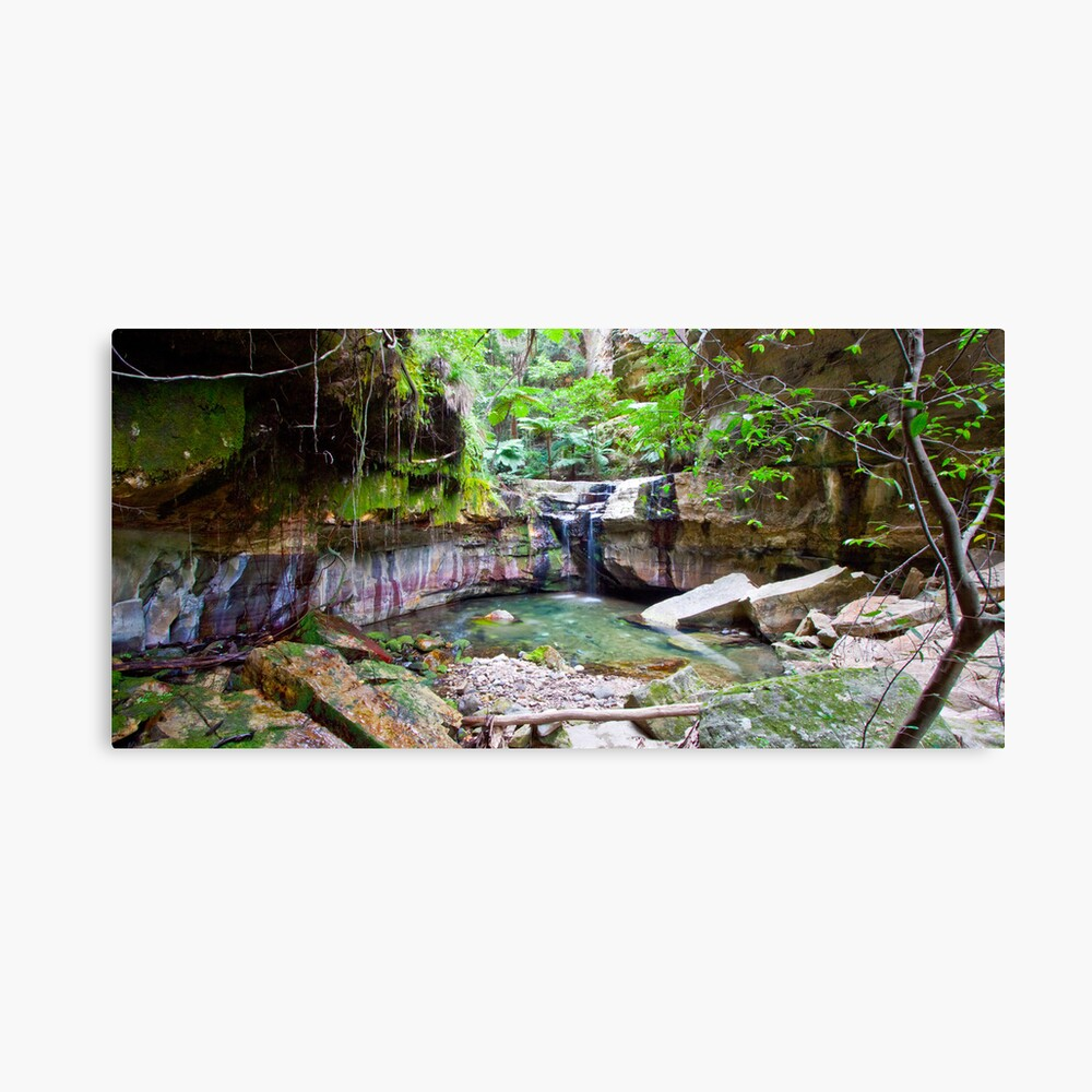 The Moss Gardens Canvas Print
