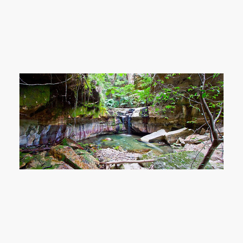 The Moss Gardens Photographic Print