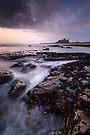 Northumberland Sunrise by Michael Treloar