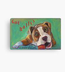 Bulldog - Spay/Neuter Canvas Print