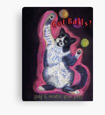 Juggling Cat - Spay/Neuter Canvas Print