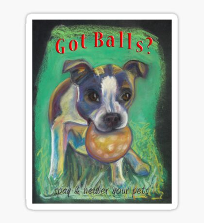 Got Balls? Boston Terrier Sticker