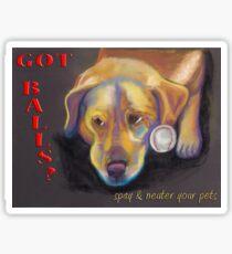 Got Balls? Golden Lab Sticker