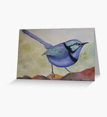Splendid Blue Wren Greeting Card