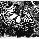 Butterfly Print by Holly Daniels