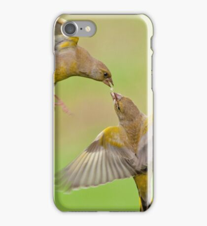 Greenfinches in flight iPhone Case/Skin