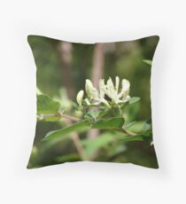 Honey Suckle Throw Pillow