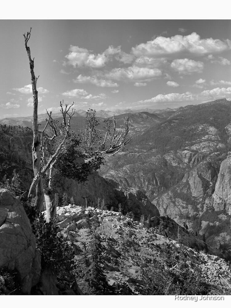 Grand Canyon of the Tuolumne - Yosemite N.P. by rodneyj46