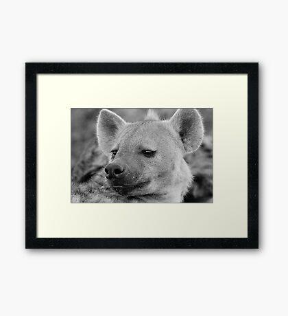 Hyena Profile Framed Print