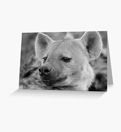 Hyena Profile Greeting Card