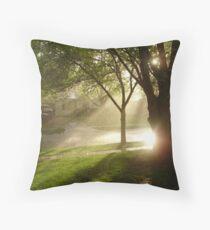 Rainshine Throw Pillow