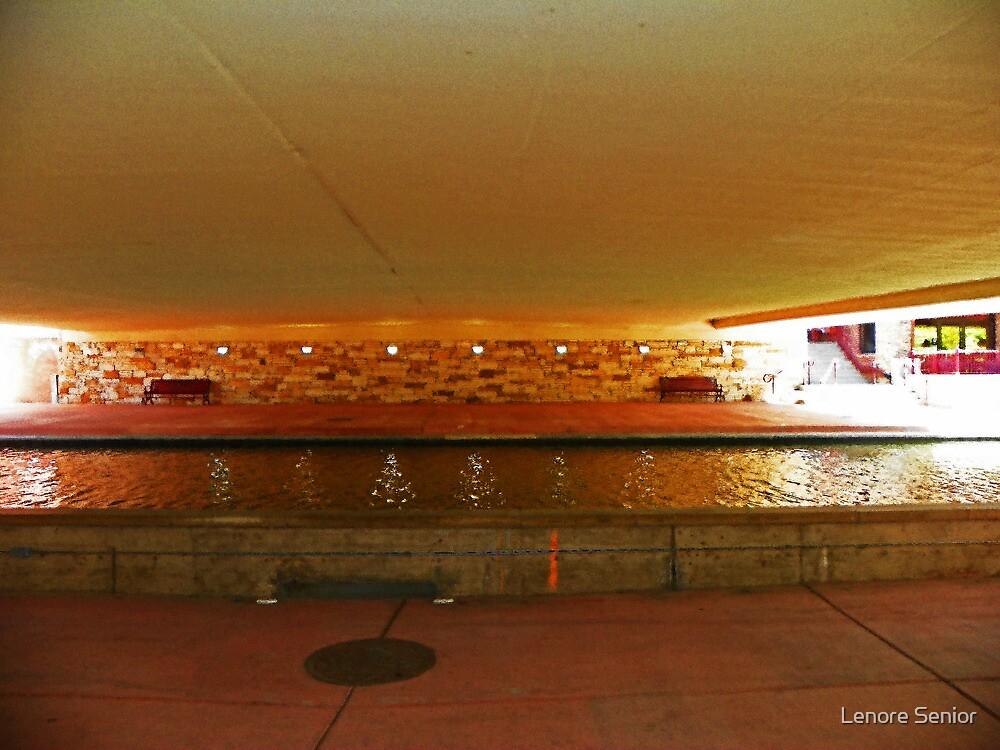 Under the Bridge by Lenore Senior