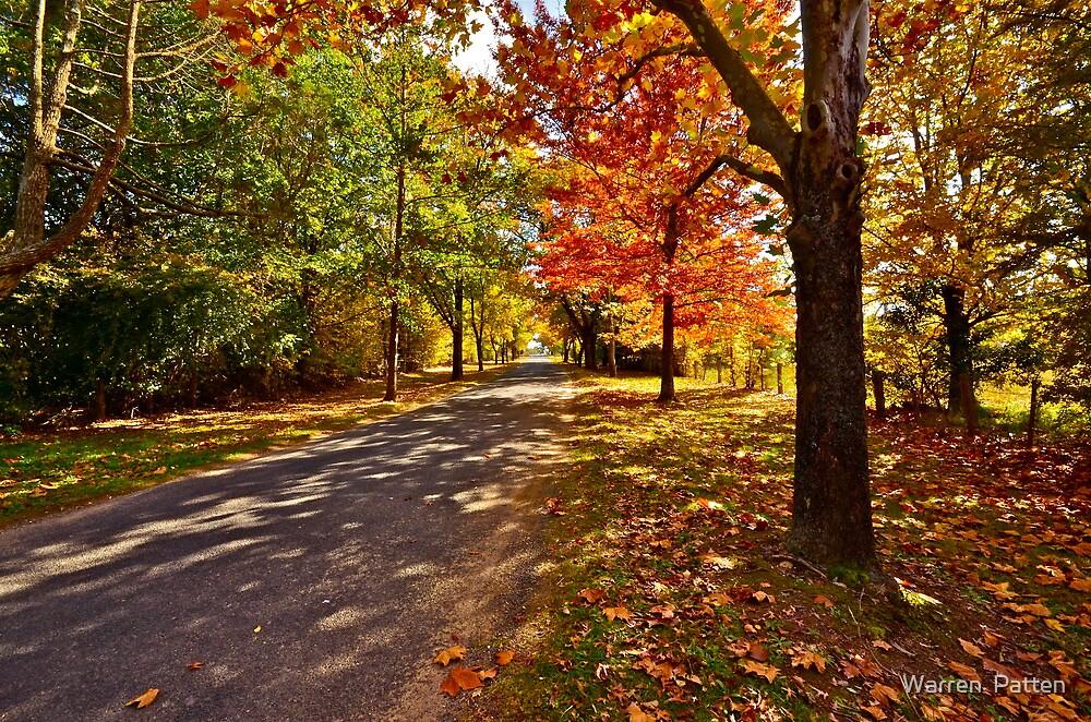 Country Road. by Warren  Patten