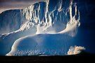 Iceberg I by Doug Thost