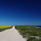 Wild Yorke Peninsula by Lisa Evans