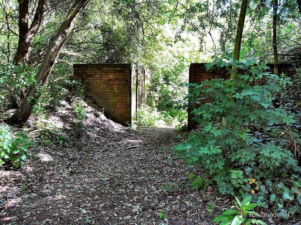 Entrance to the Secret Garden. Birchwood. UK. by ronsaunders47