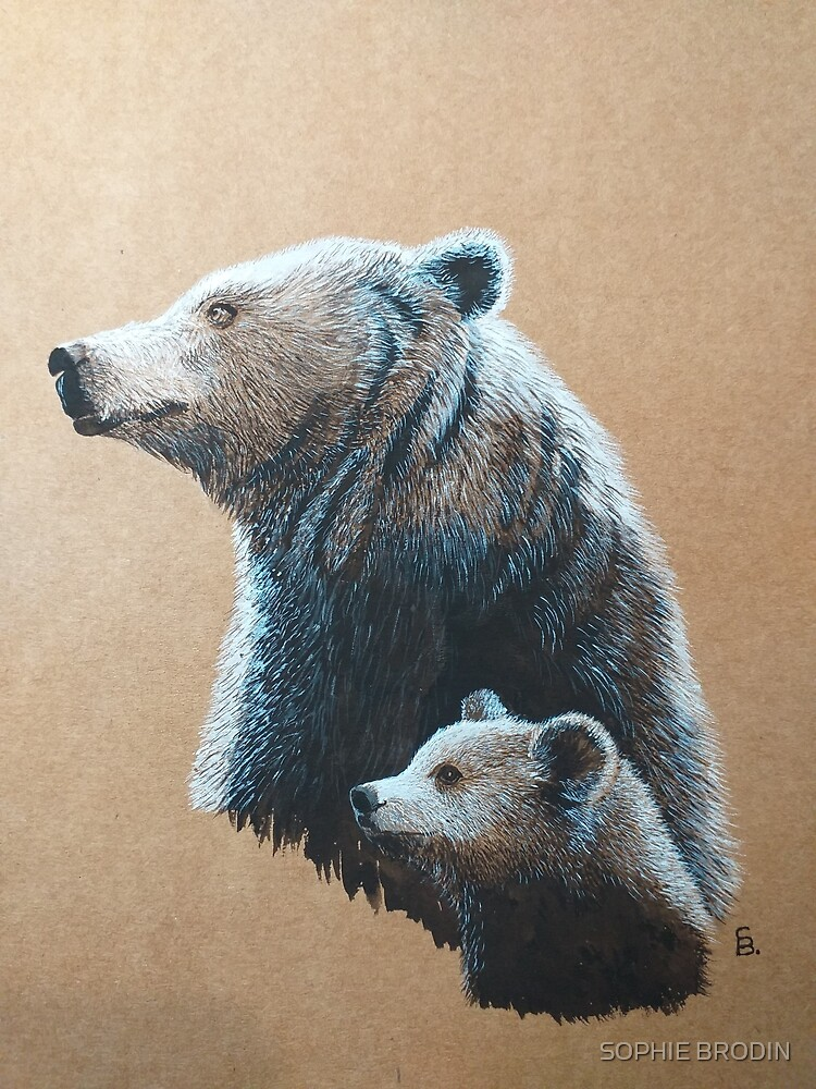 Dipper and Bear by SophieBrodin