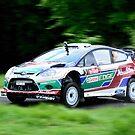 WRC Ford Fiesta by Willie Jackson
