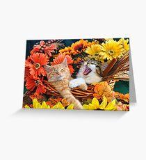 Venus & Di Milo ~ Cute Kitty Cat Kittens in Fall Colors Greeting Card