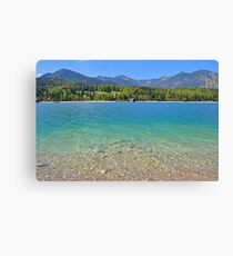 beautiful water color Canvas Print