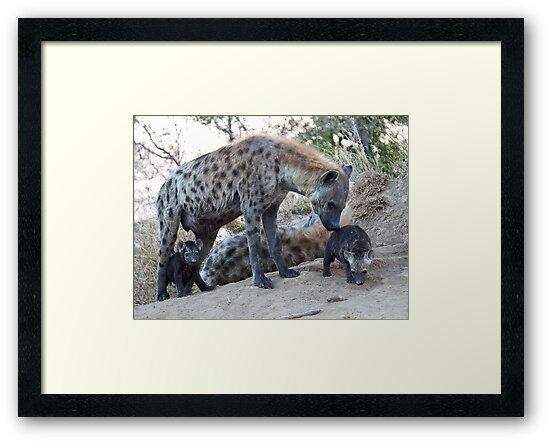 Hyena Family by Michael  Moss