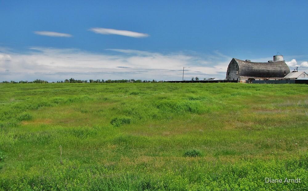 We Need A Barn Raising by Diane Arndt