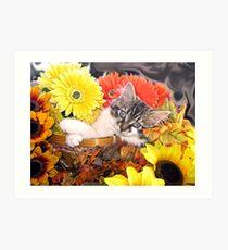 Venus ~ Dreamy ~ Fall Kitty Cat Kitten in Flower Basket Art Print