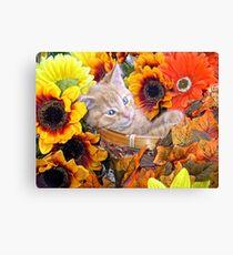 Di Milo ~ Cute Kitty Cat Kitten in Decorative Fall Flowers Canvas Print