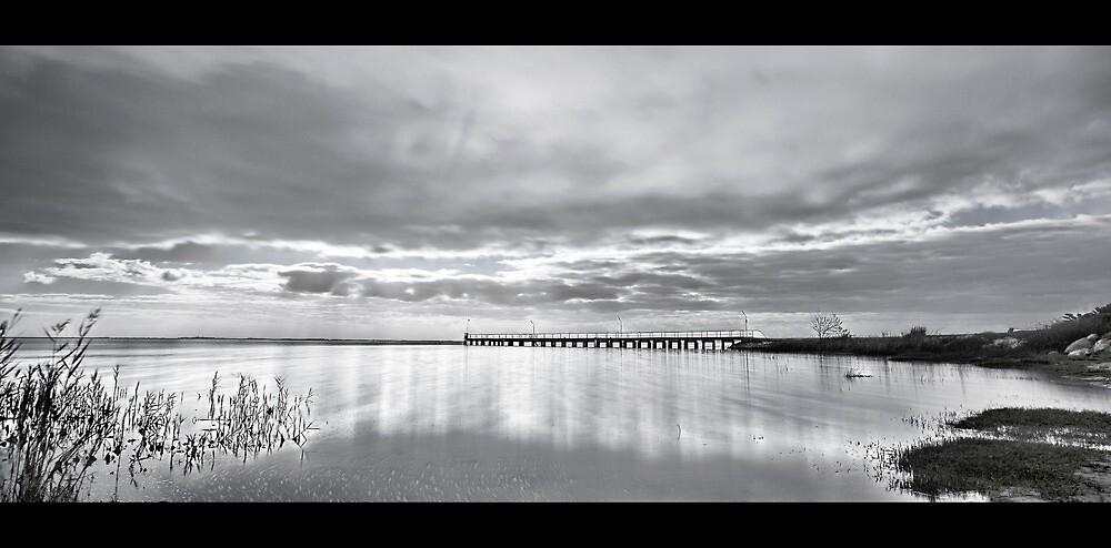 Lake Alexandrina. by Mick Smith