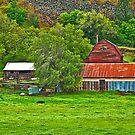 Wasco County (Oregon) Farm by Bryan D. Spellman