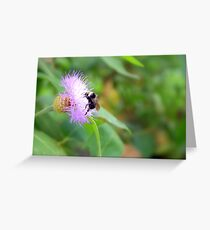 Busy Bumble Bee Greeting Card