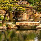 Serene Garden by Barbara  Brown