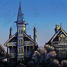 Witches' Houses, Johnston St, Annandale by Joel Tarling