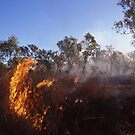 Outback Wild Fire by James Ruff