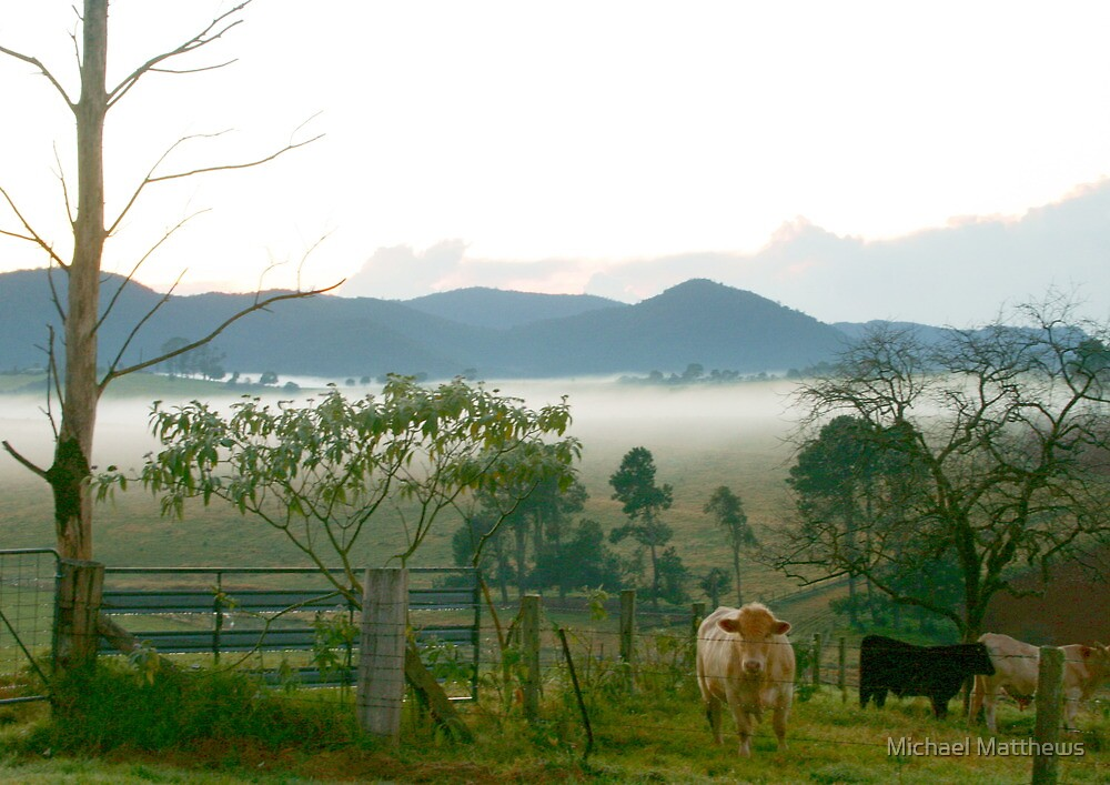 Dorrigo dawn by Michael Matthews