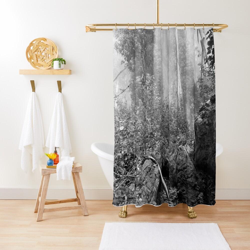 Eucalypti of Mount Sutro Shower Curtain