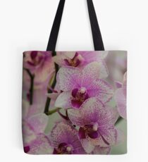 Orchid Pirate Picotee  Tote Bag