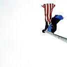 America, America  by DearMsWildOne